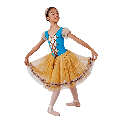 Top 10 Ballet Giselle