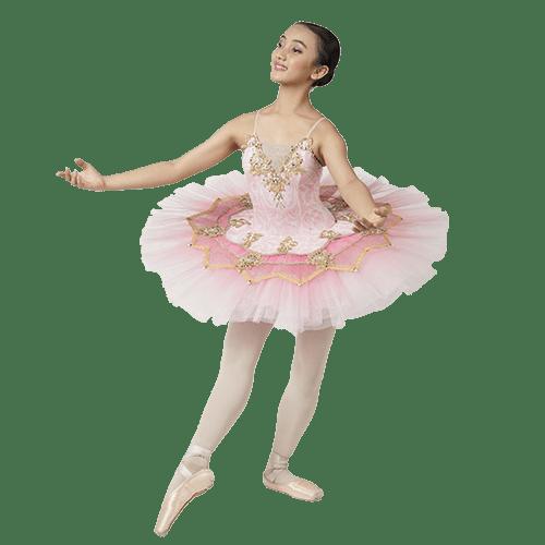 Top 10 Ballet Princess Aurora
