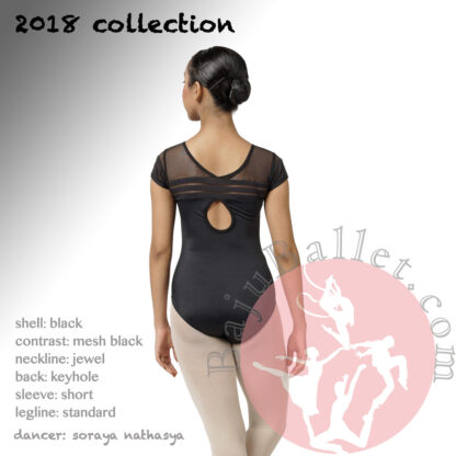 2018 Collection L12 Back